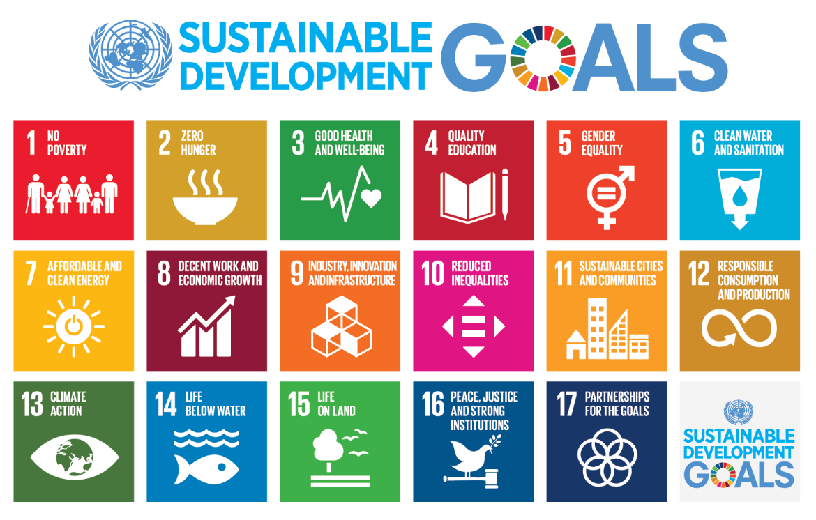 17 goals for sustainability